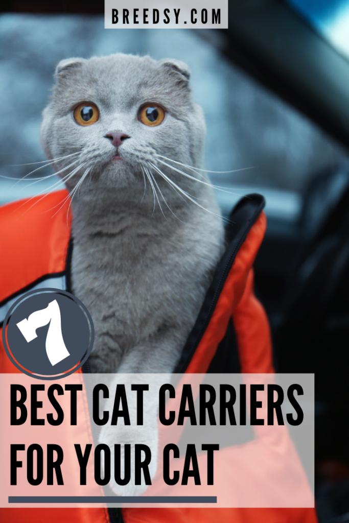 7 Best Picks for the Best Cat Carrier